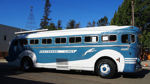 1950's Greyhound bus
