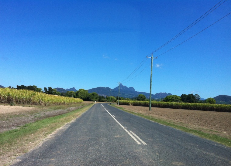 Road leading to Mount Warning